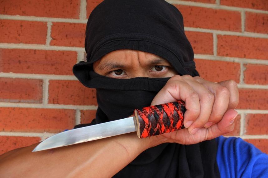 ninja-